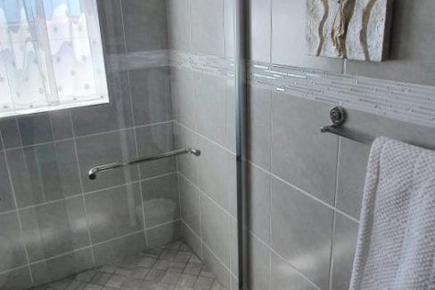 Shower in guest bathroom